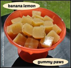 Gummy Paws — The Canine Chef Cookbook Dog Training Methods, Basic Dog Training, Dog Training Techniques, Training Dogs, Homemade Dog Treats, Healthy Dog Treats, Doggie Treats, Dog Treat Recipes, Dog Food Recipes