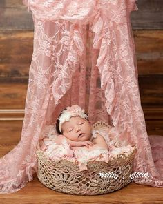 56 Best Newborns Ten Tiny Toes Photography Images On