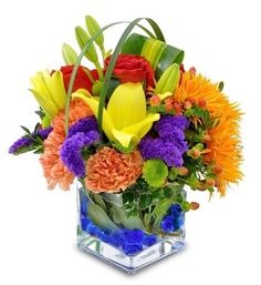 Colorful Cube-Exhilarating colors of Gerbera Daisies, lilies, roses, carnations and more create a festive feel with this bold cube-vase floral gift. Rainbow Flowers, Summer Flowers, Colorful Flowers, Beautiful Flowers, Get Well Flowers, Different Flowers, Online Flower Delivery, Carnations, Gerbera Daisies
