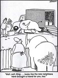 Cartoon Rhino   OPEN - Living Laboratories Project::.