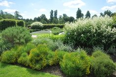 Marks Hall Gardens and Aboretum