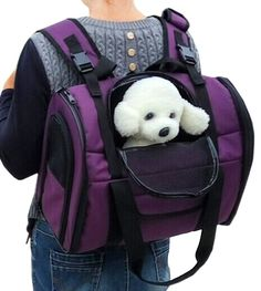 Lovely summer Luxury Soft Sided cat Carrier Airline Approved cat Travel Portable Carrier Bag for Dogs Cats and Puppies * Awesome cat product. Click the image : Cat Cages, Carrier and Strollers Puppy Find, Cat Cages, Cat Training Pads, Dog Bag, Cat Shedding, Cat Carrier, Cat Fleas, Pet Travel, Cat Grooming