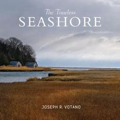 The Timeless Seashore