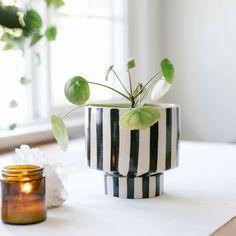 Indoor Planters, Ceramic Planters, Planter Pots, Justina Blakeney, Blue Amber, India Colors, Pillow Sale, Cool Plants, Color Mixing