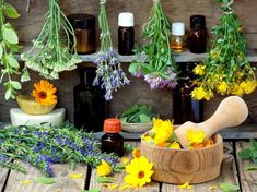 Essential Oils For Urinary Tract Infection: Your Secret Weapon For UTI Treatment And Prevention Essential Oil Benefits Essential Oil For Hives, Essential Oils For Memory, Essential Oils For Cough, Essential Oil Uses, Remedies For Mosquito Bites, Foot Remedies, Herbal Remedies, Health Remedies, Henna Designs