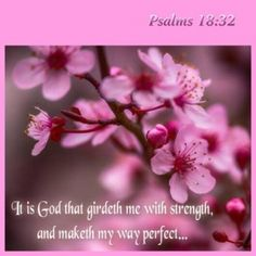 Psalm  18:32    It is God that girdeth me with strength, and maketh my way perfect.   KJV