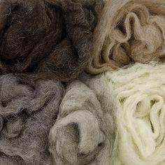 Sirri kaardvlies, vijf verschilende tinten wol van Faroër schapen.