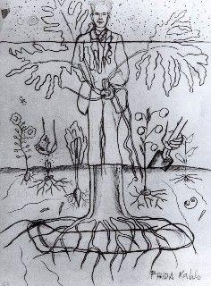 Frida Kahlo, Drawings, Sketches, Dibujos, Bosquejos, 02