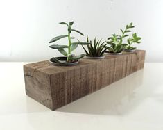 Succulent Planter Made from Reclaimed Wood, Indoor Herb Garden, Wedding Table Center Piece, Gift for Him, Unique Housewarming Gift