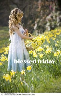 A Young Girl Gathering Daffodils In A Basket Blessed Friday, Precious Children, Hello Spring, Image Photography, Daffodils, How Beautiful, Royalty Free Photos, Cute Kids, Flower Girl Dresses