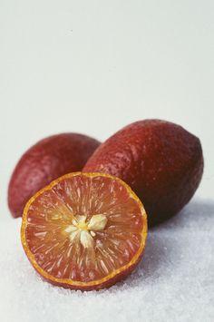 top 10 des fruits et des lgumes hybrides quand les chercheurs font nimporte quoi