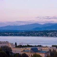 Geneva and its Lake | Vue sur le Palais des Nationset le Lac #geneva #ttot #visitgeneva #geneve #swissriviera #switzerland #genevacity #bainsdespaquis #citybreak #switzerland #lacdegeneve #lac #riviera #luxurytravel #lakegeneva #lacleman #genevalake  #hotelview #peace #view #genevacity #monument #lacleman #genevalake #hotelview #peace #view #phare #mountain #igersuisse #uno  #waterfountain  #bfmgeneva #visitgeneva #swan #cygnes #onu #unitednation #uno