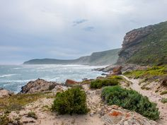 Robberg Reserve Hike - one of the best activities offered in Plettenberg Bay. Stuff To Do, Things To Do, Good Things, Picnic Lunches, Tourism Industry, Hiking Trails, Wine Tasting, Lodges, South Africa