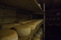 100 Liter Milch werden täglich zu Käse verarbeitet Summer Vacations, Milk