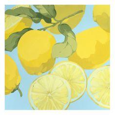 fresh lemons, art.com