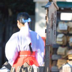 巫女さんの装束はどこも一緒なのなんでなん  #巫女さん#巫女#巫女装束 #寺社仏閣 #神社#shrine #寺#temple #冬#winter #beautiful #風景#自然#景色#picture#landscape#nature #東京#日本#tokyo#japan#love#loves_nippon #写真好きな人と繋がりたい #一眼レフ
