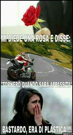 Funny Video Memes, Funny Jokes, Funny Images, Funny Photos, Italian Memes, Funny Phone Wallpaper, Wtf Moments, Donia, Funny Messages