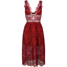 For Love And Lemons sheer lace midi dress ($533) ❤ liked on Polyvore featuring dresses, red, calf length dresses, red midi dress, red dress, midi dresses and mid calf dresses