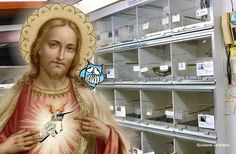 Tettenvogel - Jezus