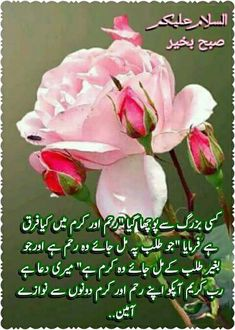 50 Best subha khair images | Morning dua, Morning quotes