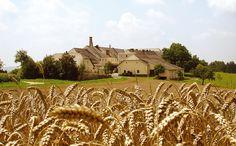 Die Landbrauerei Hofstetten Monument Valley, Vineyard, Germany, Nature, Travel, Outdoor, Brewery, Pictures, Voyage