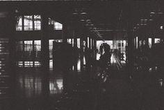 ilford Black And White, Film, Dark, Movie, Blanco Y Negro, Movies, Film Stock, Film Movie, Films