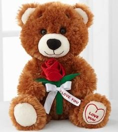 Toys:FTD Flowers Build-A-Bear-Workshop I Love You Message Bear