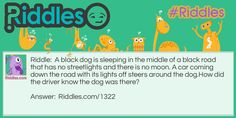 A black dog is sleeping in the middle of a black road that has no streetlights and there is no moon. A car coming down the road with its lights off steers around the dog.  How did the driver know the dog was there?. Answer:  https://www.riddles.com/1322 #riddles
