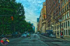 NYC Trees vs Buildings by Rodney Hickey Design Studio, via Flickr