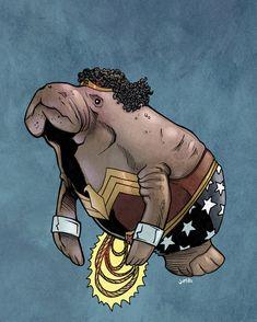 DC And Marvel Superheroes As Manatees Wonder Woman Manatee