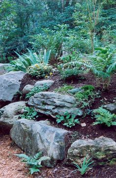 creating sloped rockery This would look nice in the front yard with a meandering sloped walkway around it and large flat boulders to sit on. The front yard is South facing so it gets hot so we could use the succulents I have to place in raised mound. Sloped Garden, Hardscape, Landscape Projects, Shade Garden, Landscape Design, Hillside Garden, Rock Garden Design, Rockery Garden, Rock Garden