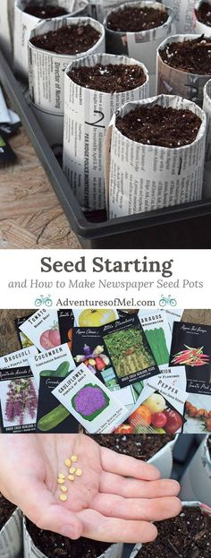 Seed starting is a family affair and a great spring time activity in anticipation of gardening season. Learn how to create your own DIY newspaper seed pots for garden seeds. Re-purpose, re-use, and recycle with newspaper seedling pots.