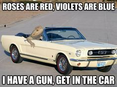 Roses are red, violets are blue... I have a gun, get in the car :-D