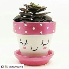 Terracotta Plant Pots, Ceramic Flower Pots, Painted Flower Pots, Painted Pots, Small Indoor Plants, Indoor Planters, Potted Plants, Air Plants, Indoor Herbs