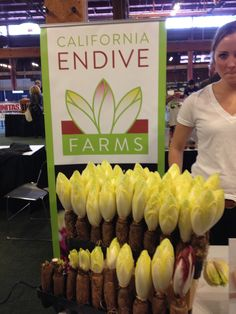 this is how Belgian endive grows