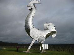 Le coq du château la France #bordeaux