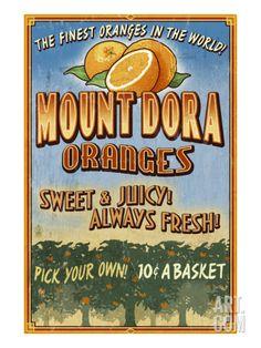 Mount Dora, Florida - Orange Orchard Sign Print by Lantern Press at Art.com Dunedin Florida, Old Florida, Vintage Florida, Naples Florida, Florida Travel, Miami Florida, Florida Style, Florida Vacation, South Florida