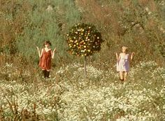 Movie Night: Vera Chytilová's Daisies Film Inspiration, Portrait Inspiration, Daisies 1966, 60s Films, The New Wave, Film Aesthetic, Film Stills, Upcoming Events, Cinematography