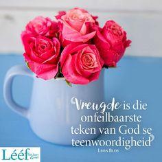 Afrikaans, Van, Faith, Mugs, Rose, Tableware, Flowers, Plants, Pink