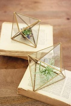Kalalou Set Of 2 Glass And Metal Multi Faceted Terrariums
