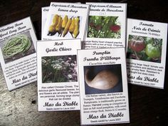templates for seed saving