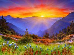 Скачать обои закат, горы, деревья, цветы бесплатно для рабочего стола в разрешении 1920x1440 — картинка №532194