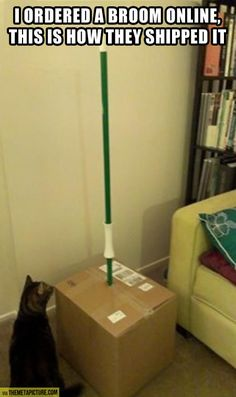 this is ridiculous!!! who orders a broom online? that's what Target is for.