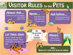Summertime Safety with Kids and Pets - Really good tips, with a nice graphic too, about kid/dog interaction so that it's safe for both the dog and the child. We adults could stand a refresher too sometimes!