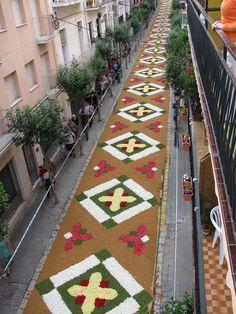 Carpet of flowers for Corpus Christi / alfombras de flores porción Corpus Christi, Sitges Cubre