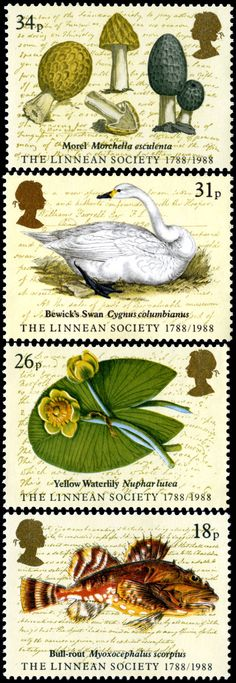 Royal Mail 1988 - Bicentenary of Linnean Society http://rmspecialstamps.com/##stamps