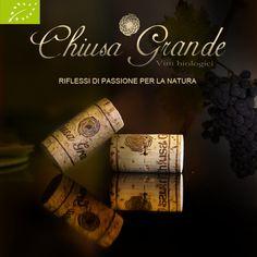 RIFLESSI DI PASSIONE PER LA NATURA #vinosophia #passione #chiusagrande #vino #wine #organicwine #cork #Abruzzo #Italy foto di Chiusa Grande.