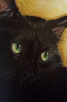 Black Cat Cole by Diane Irvine Armitage.