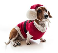 Santa Puppy Christmas Dog Sweater Free Pattern ~ Cute outfit for your dog that you can knit yourself | Ravelry