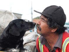 No interior de SP, o catador Francinaldo reencontra cão perdido em reintegração de posse depois de mais de dois anos. Confira a história http://glo.bo/1qmXH5q (Foto: Fábio França/G1)